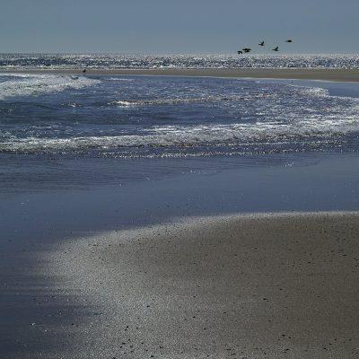 Chatham Sandbar