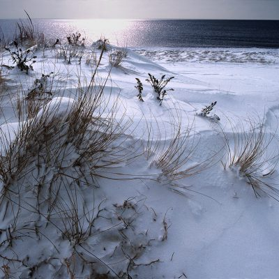 Winter Dune