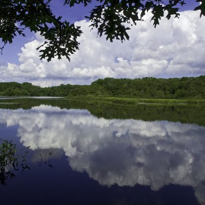 Quiet Pond 2
