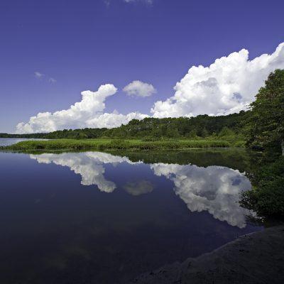 Quiet Pond 1